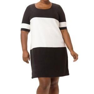JunaRose Black and White Dress